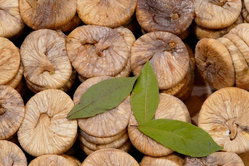 Инжир: польза и вред для организма. какой инжир лучше для здоровья – свежий или сушеный?