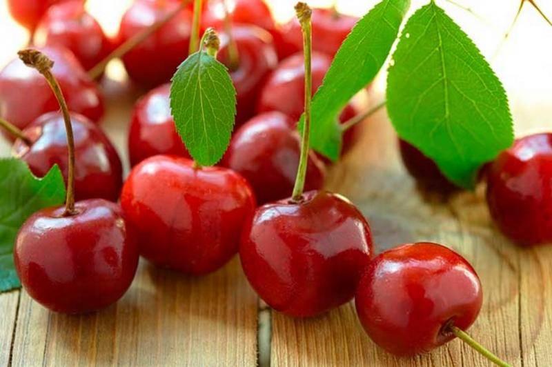 Польза и вред вишни для здоровья организма