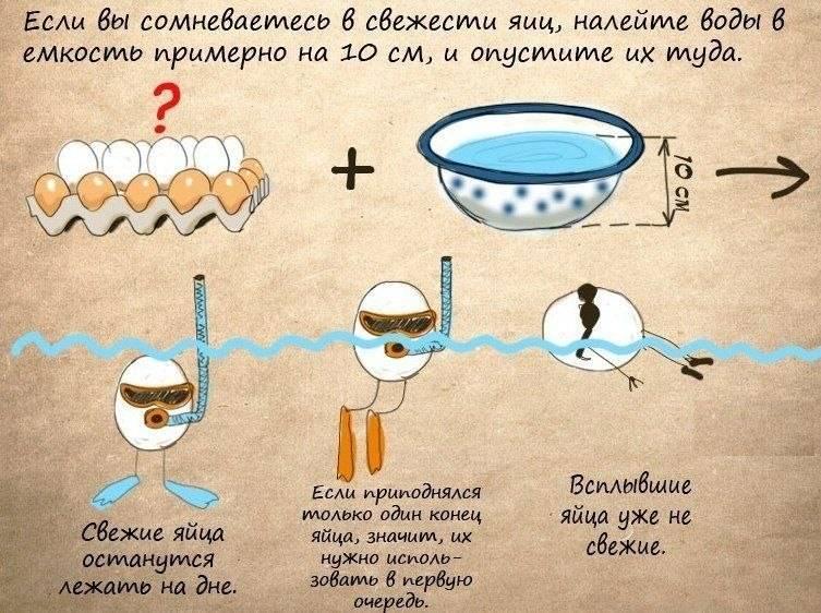 Как определить тухлое яйцо — в воде и другими методами