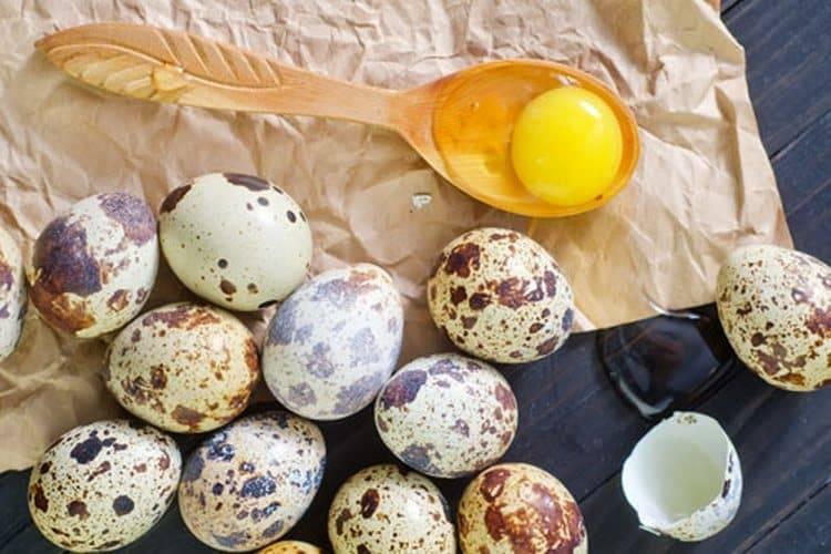 Перепелиные яйца, польза и вред для женщин, мужчин, детей, состав, калорийность, противопоказания