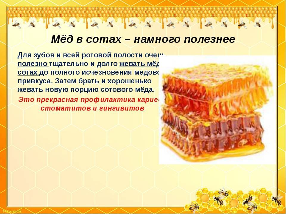 Мед пчелиный – польза и вред для человека
