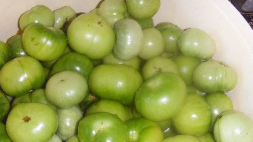 О пользе и вреде зеленых помидоров: состав, особенности употребления. почему зеленые помидоры вредны и чем они полезны для здоровья