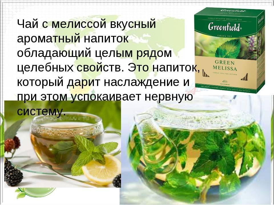 Мятный чай: его польза и вред, применение