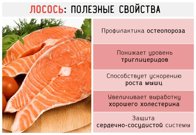 Чем полезна слабосоленая рыба семга для организма женщины