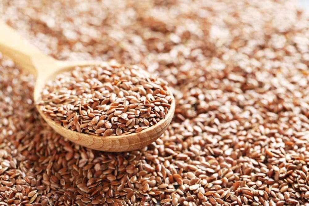 Уникальные семена льна: польза и вред для организма и здоровья человека