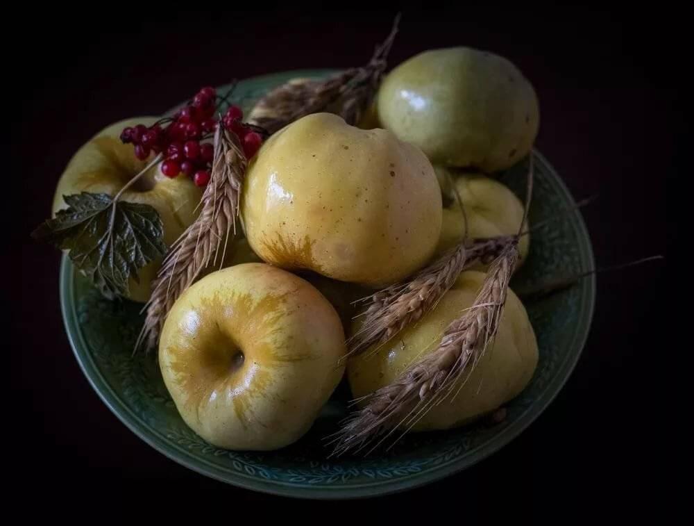 Польза и вред яблок для здоровья