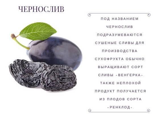 Чернослив: польза и вред для организма, свойства при похудении, противопоказания