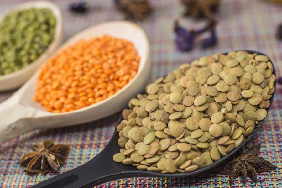 Чечевица польза и вред: рецепты приготовления и способы применения для здоровья, полезные свойства для похудения