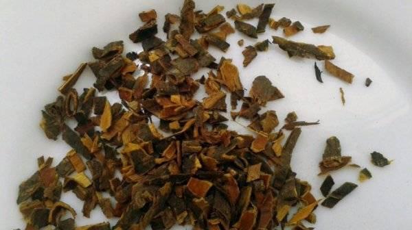 Кора крушины: применение, лечебные свойства, отзывы