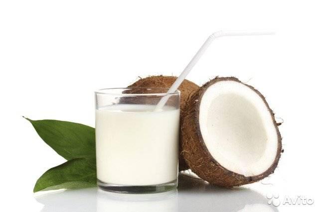 Кокос — польза и вред для здоровья женщины и мужчины