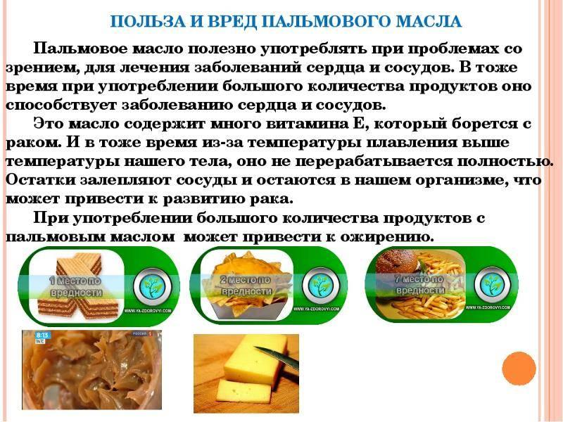 Хлеб – польза или вред для организма человека?