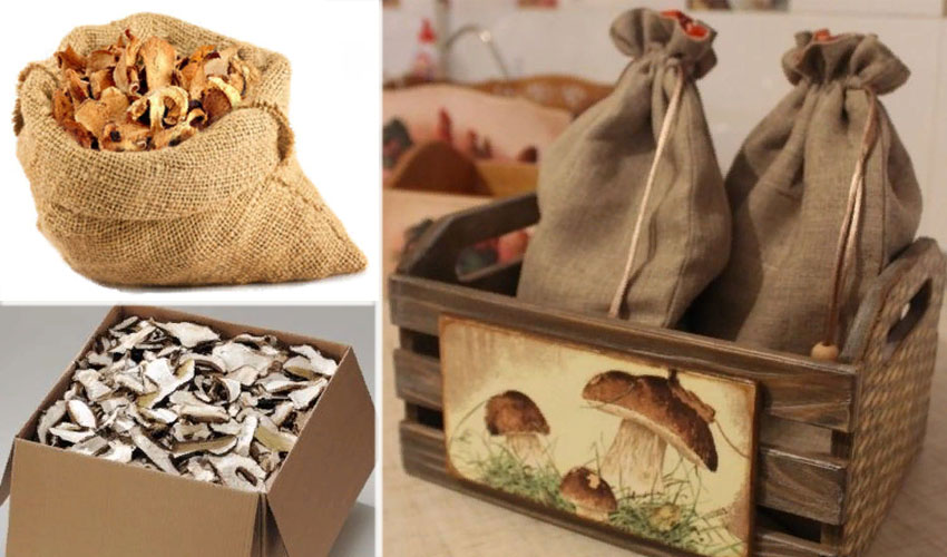 Как правильно хранить сушеные грибы в домашних условиях
