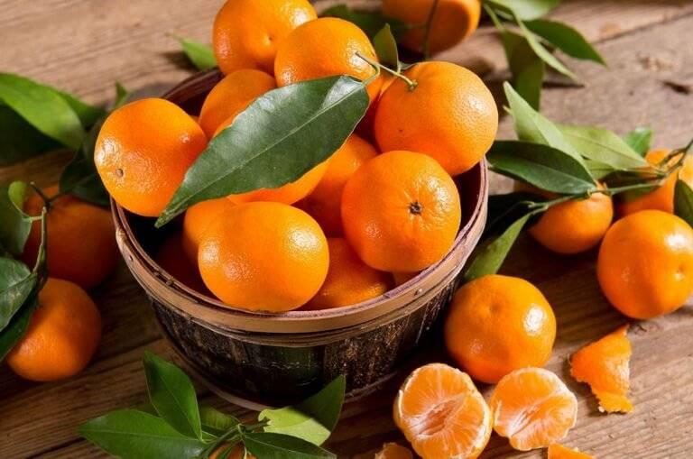 Польза и вред мандаринов для организма мужчины: как влияет на здоровье ,в каких количествах употреблять