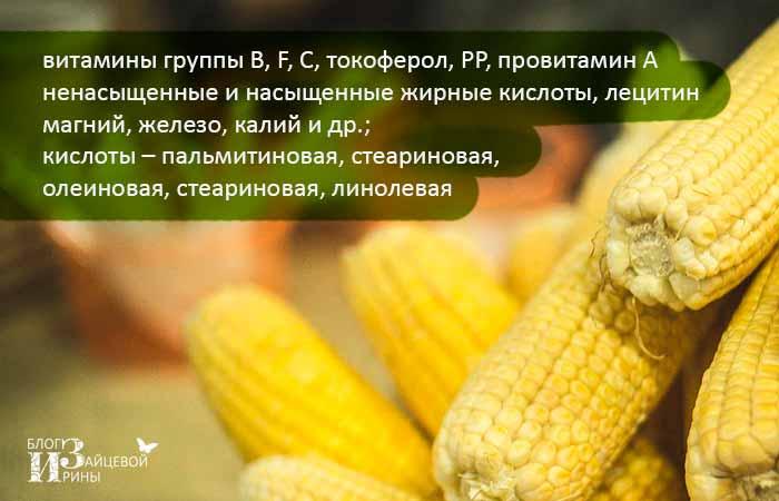 Кукурузное масло: польза и вред. как правильно применять?