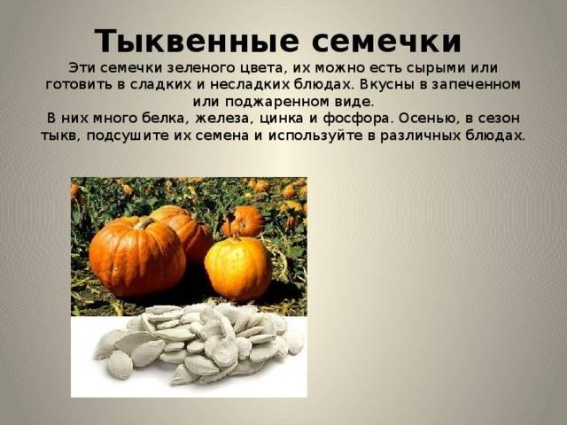 Польза и вред тыквенных семечек для нашего организма