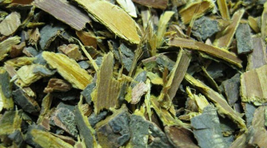 Польза коры крушины: лечебные свойства и противопоказания