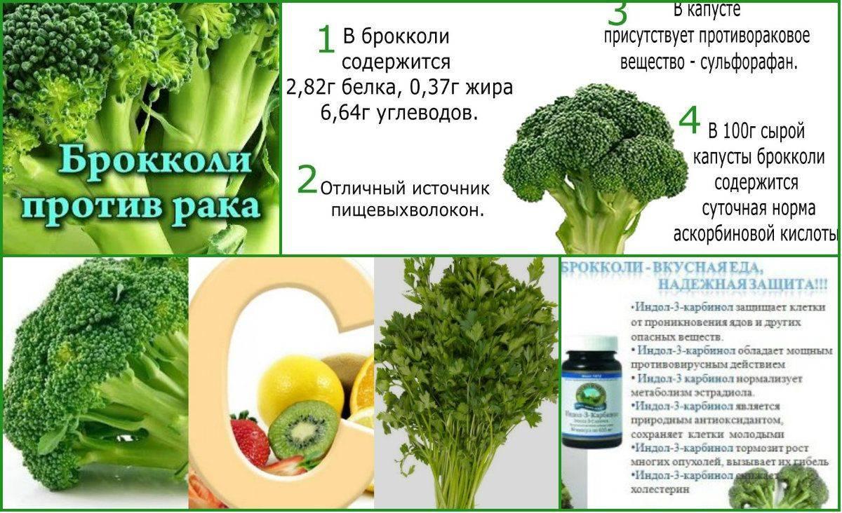 Чем полезна брокколи для здоровья человека – 13 фактов