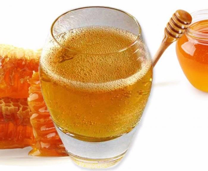 Чем полезна и вредна медовуха для организма человека: состав, калорийность