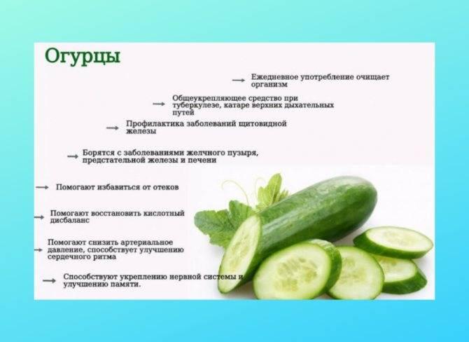 Польза и вред соленых огурцов для организма. рецепты консервирования хрустящих огурчиков