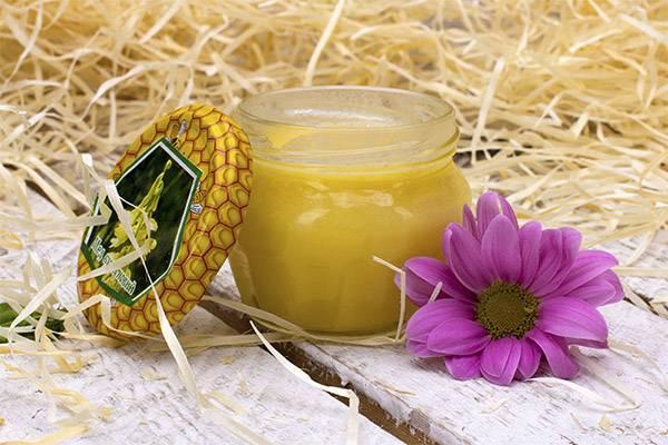 Мед донниковый: полезные свойства и противопоказания
