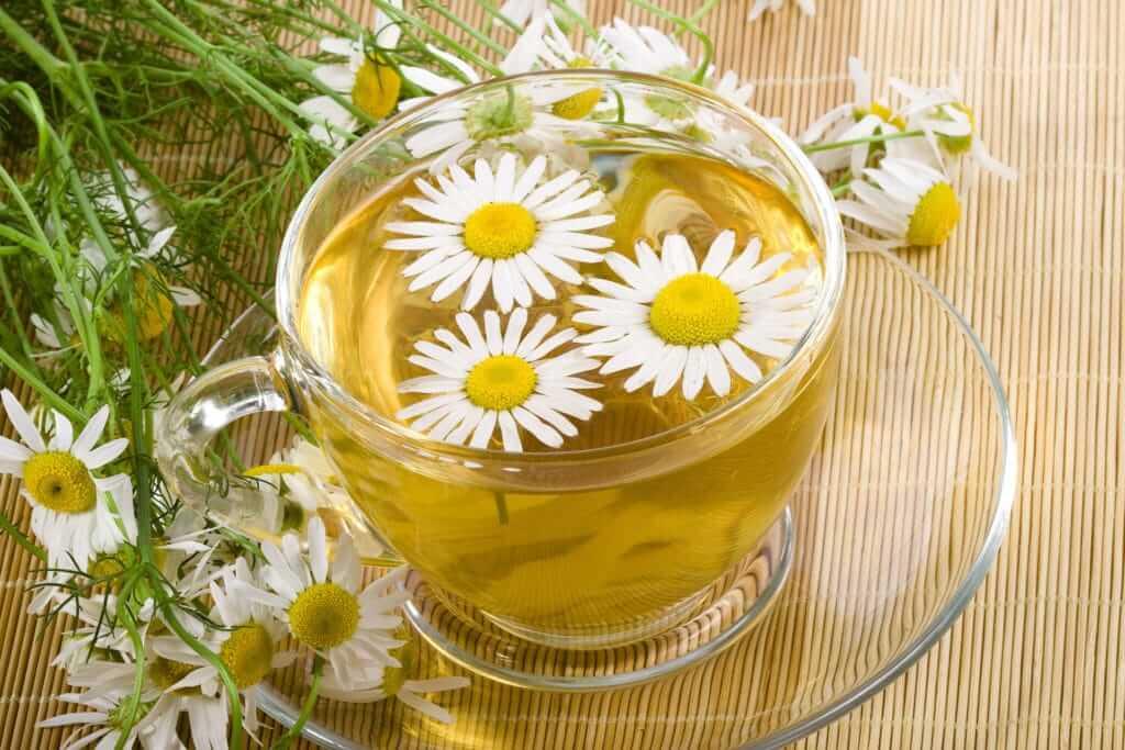 Польза и вред ромашкового чая для организма, противопоказания к применению
