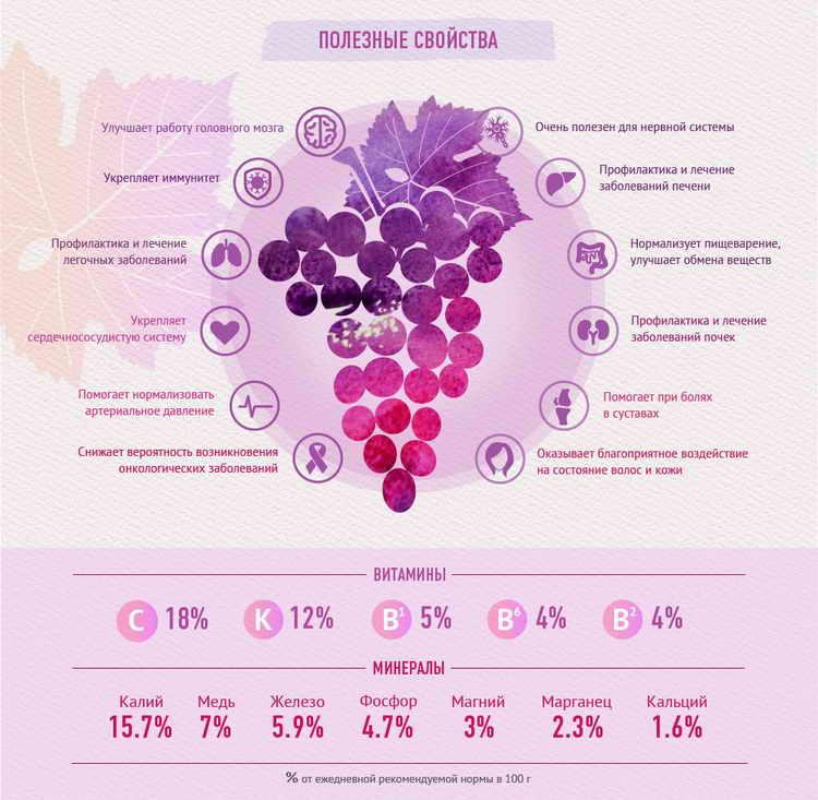 Натуральный виноградный сок польза и вред. виноградный сок — польза и вред для организма. рецепт полезного коктейля с виноградным соком