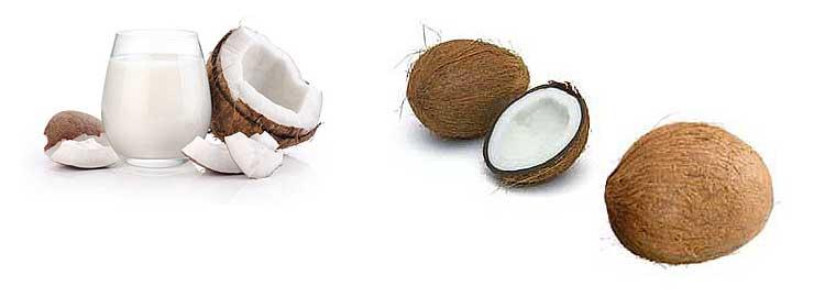 Чем полезен и чем вреден кокос для организма