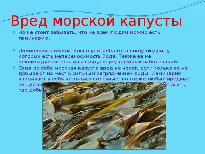 Польза и вред морской капусты. лечебные свойства морской капусты для организма
