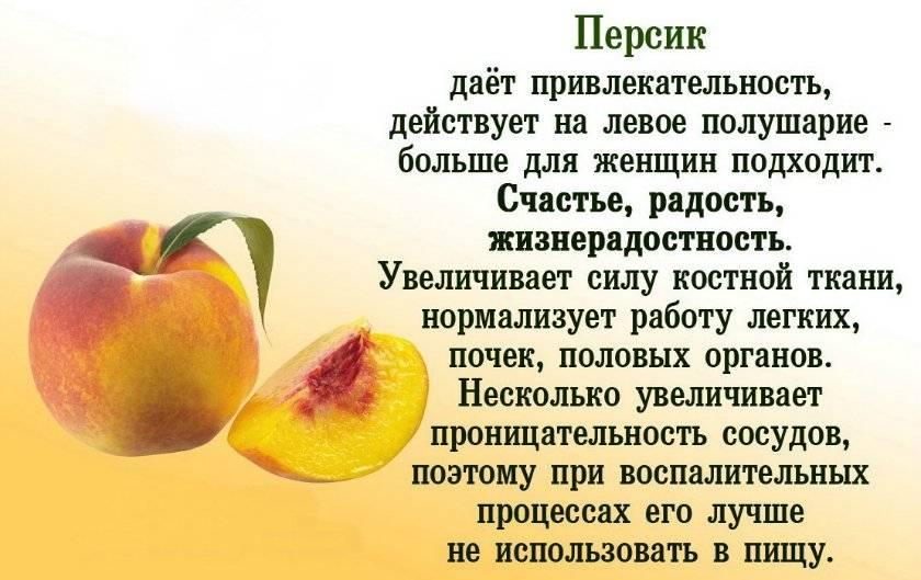 Полезен ли нектарин? польза и вред нектарина для здоровья