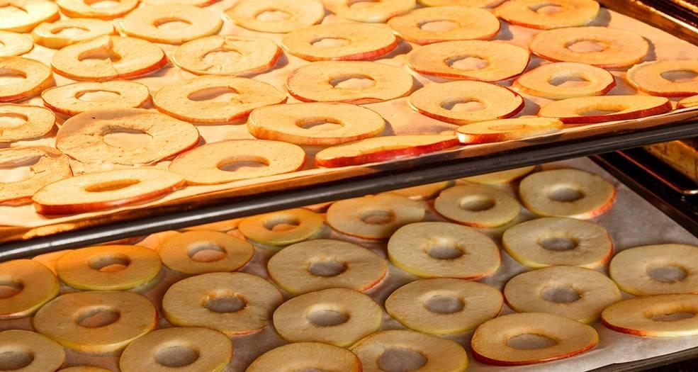 Как сушить яблоки в домашних условиях —  как правильно сушить в духовке, микроволновке, на солнце