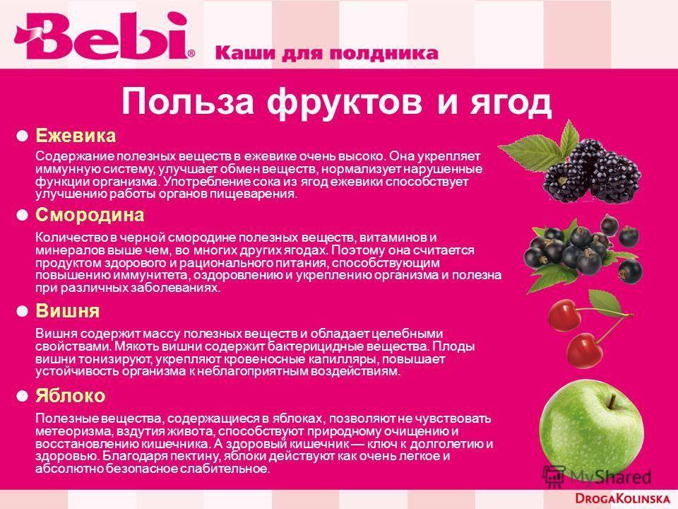 Ежевика: польза и вред, лечебные свойства и противопоказания для женщин и мужчин
