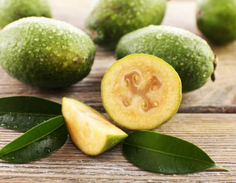 Фрукт гуава – полезные свойства, калорийность, как едят