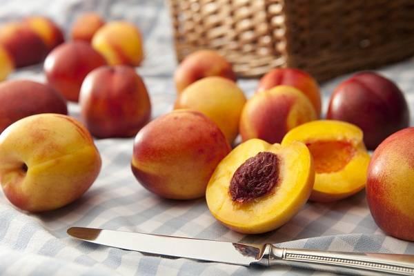 Чудесные свойства нектарина − как природная мутация создала уникальный фрукт?