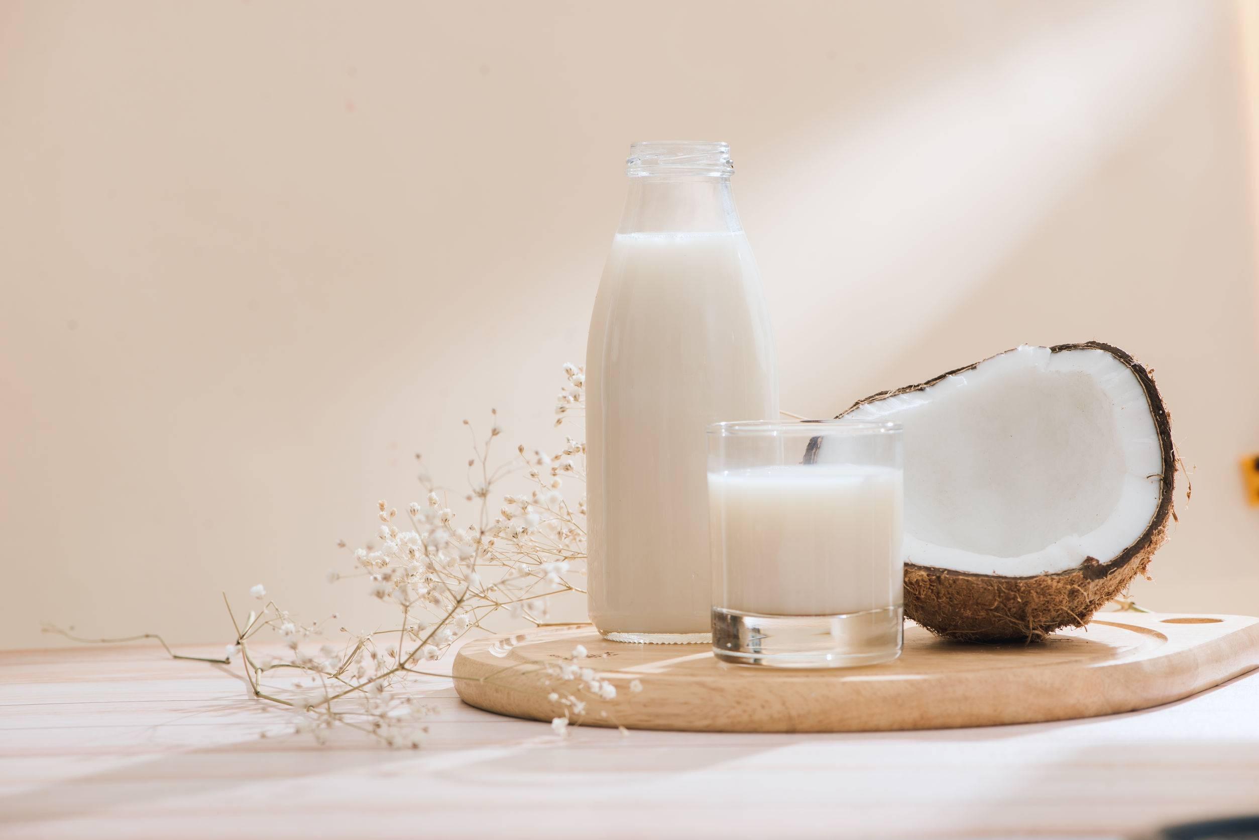 Польза и вред кокосового молока для организма