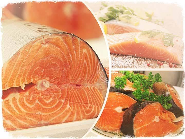 Семга – состав, калорийность и польза для организма