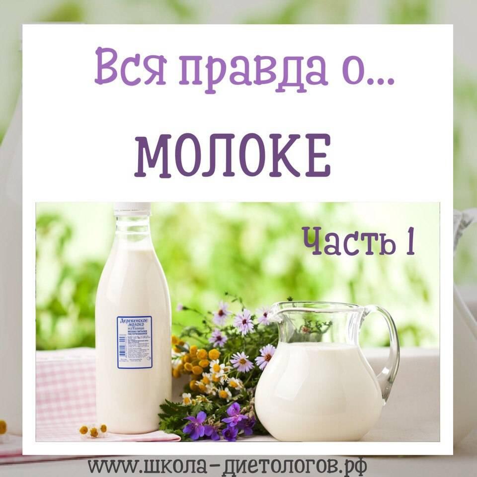Польза и вред коровьего молока