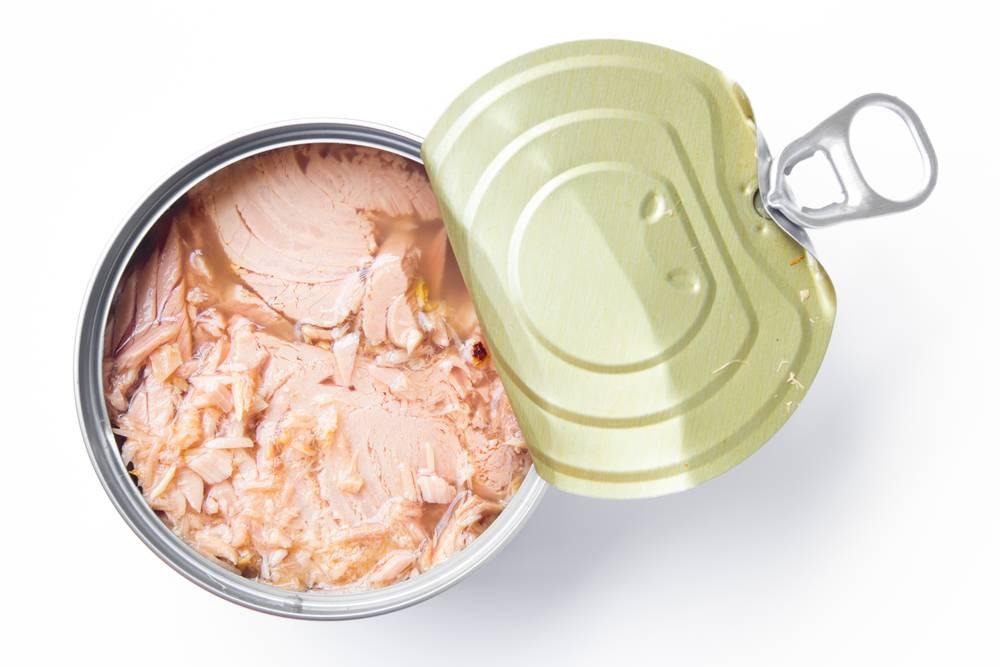 Польза тунца: полезные свойства, состав, вред, показания и противопоказания к применению (125 фото и видео)