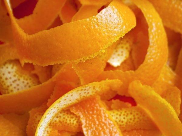 Цедра апельсина, польза и вред