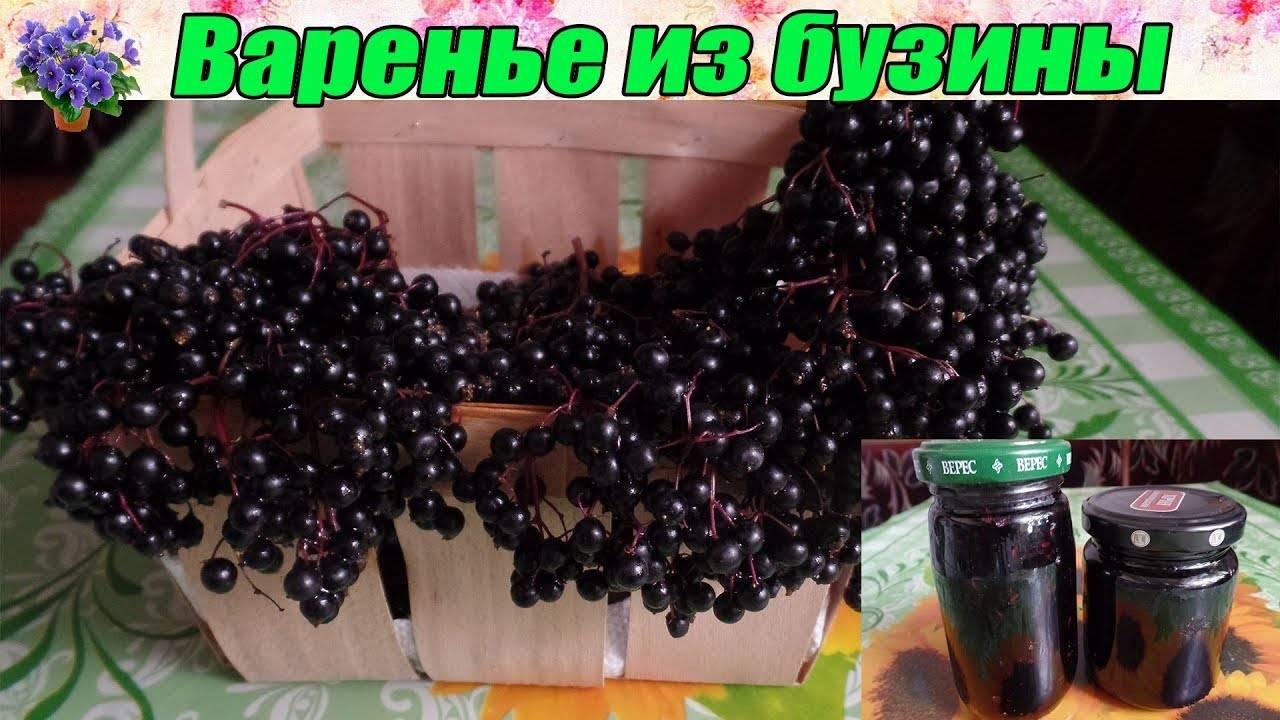 Варенье из чёрной бузины