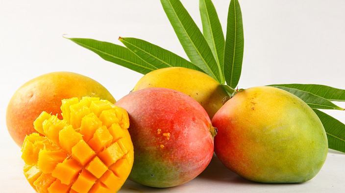 Манго — король фруктов. польза и вред