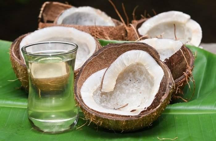 Все о пользе и вреде кокосового молока, как приготовить и где использовать