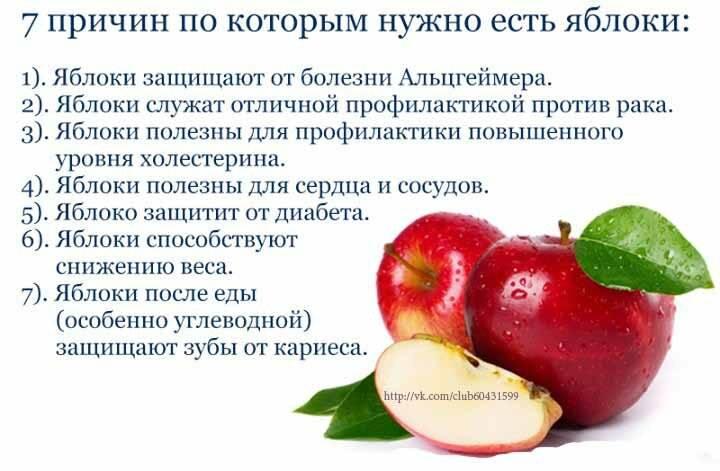 Печеные яблоки: польза и вред для человека