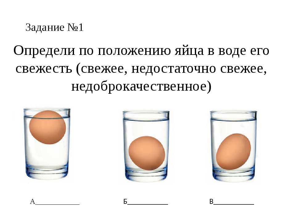 Проверяем свежесть сырых яиц в воде в домашних условиях