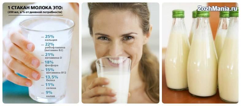 Молоко, польза и вред для организма человека