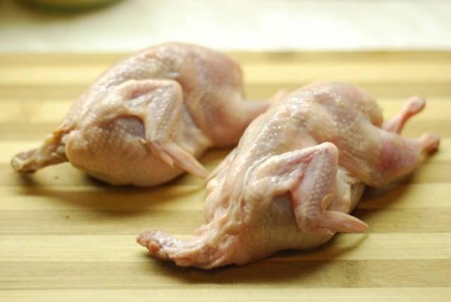Перепелиное мясо — польза и вред