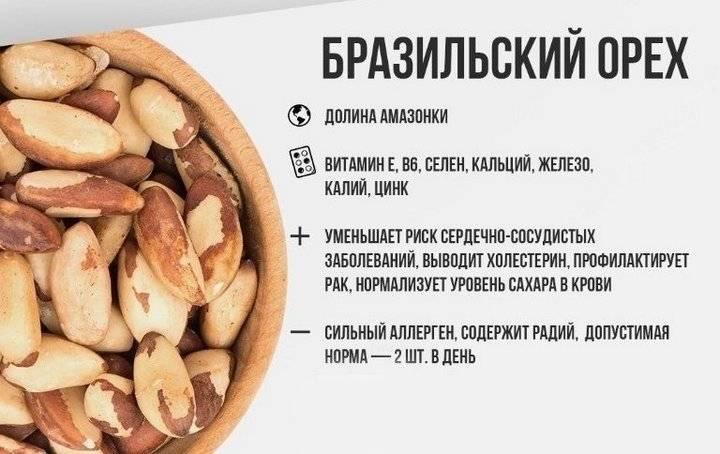 Чем полезен бразильский орех для организма мужчин