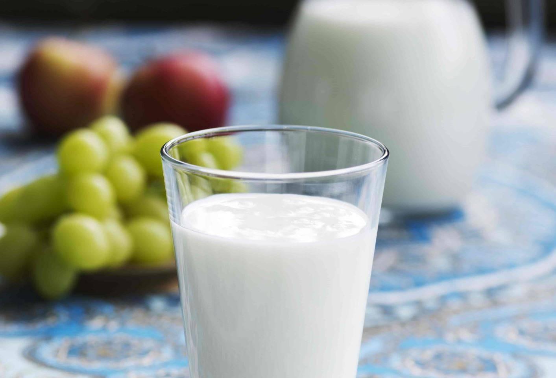 Айран – польза и вред кисломолочного напитка долгожителей