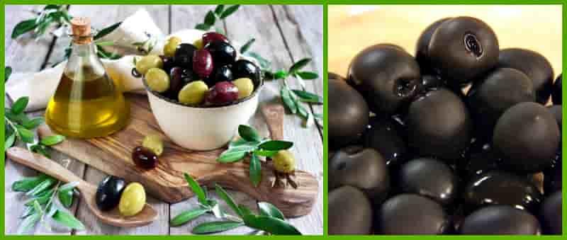 Маслины — польза и вред для организма