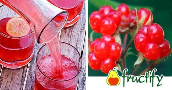Костяника полезные свойства и противопоказания отзывы. ягода костяника: полезные качества раскрываются в народных рецептах. костянка — полезное действие соков, настоек и отваров