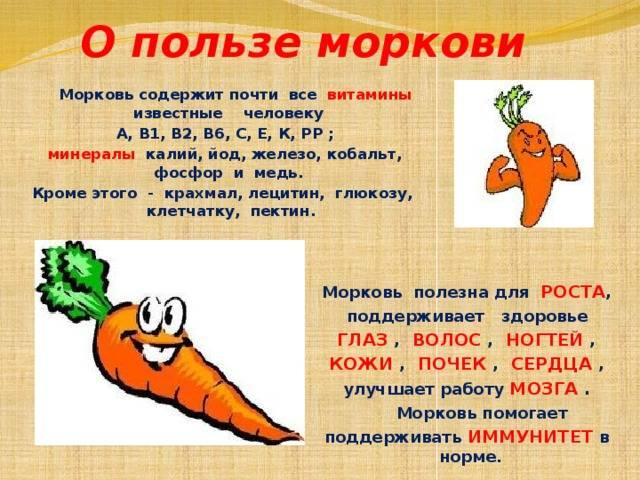 Вареная морковь: состав, польза и вред